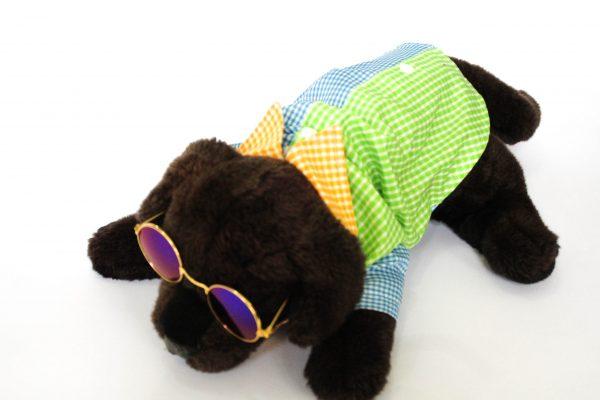 Camisa Cuadros perro
